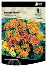 <h5>Butterfly Flower</h5><p>Bailey hang tag</p>