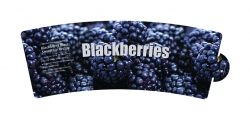 <h5>Blackberries</h5><p>pot wrap</p>
