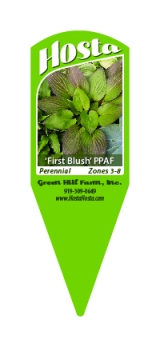 <h5>Greenhill custom printed stake tag</h5>
