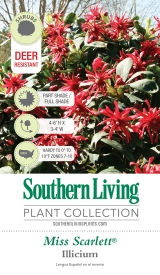 <h5>Southern Living Plant Collection</h5><p>Square Trim Tag for Southern Living Plant Collection</p>