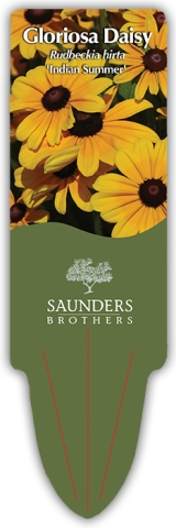 <h5>Saunders Brothers Custom Stake Tag</h5><p>Large custom printed stake tag</p>